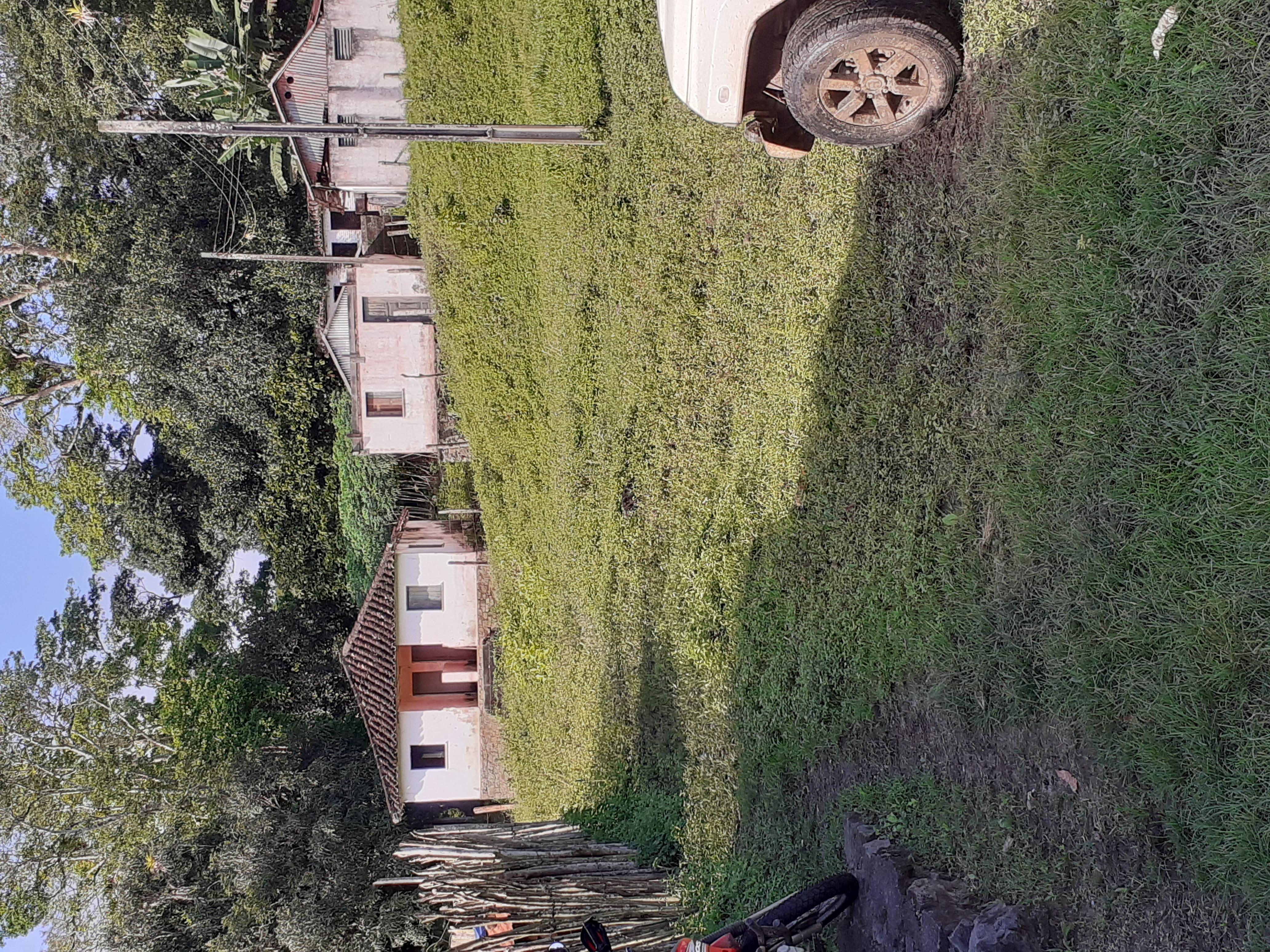 Fazenda 97 hectares a 6km