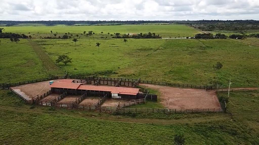 Fazenda para soja e pecuá