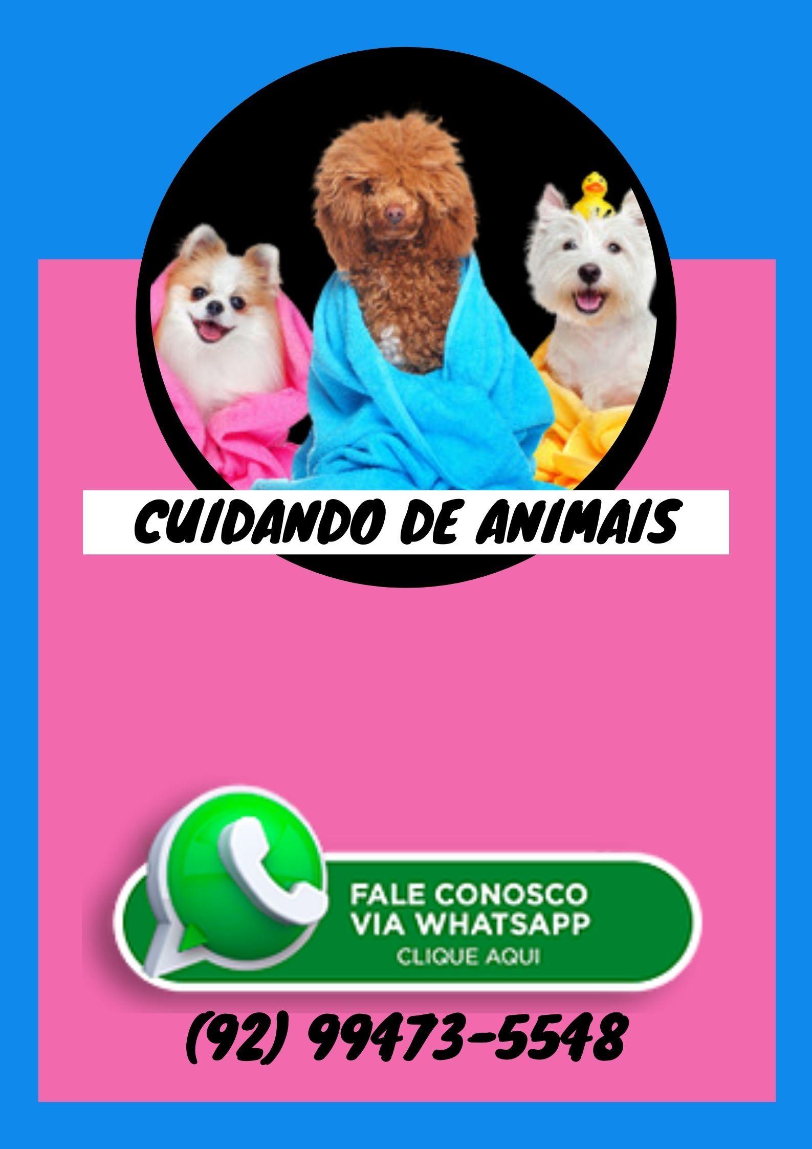 Seu Cão Fazendo cocô NO L
